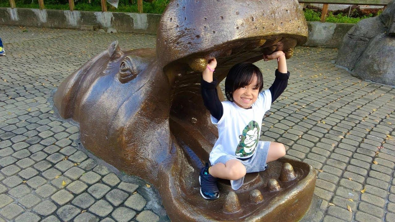 おでかけ 台湾 台北動物園へいったよ!コアラさんやおおきなカメさんがいたよ! レオスマイル